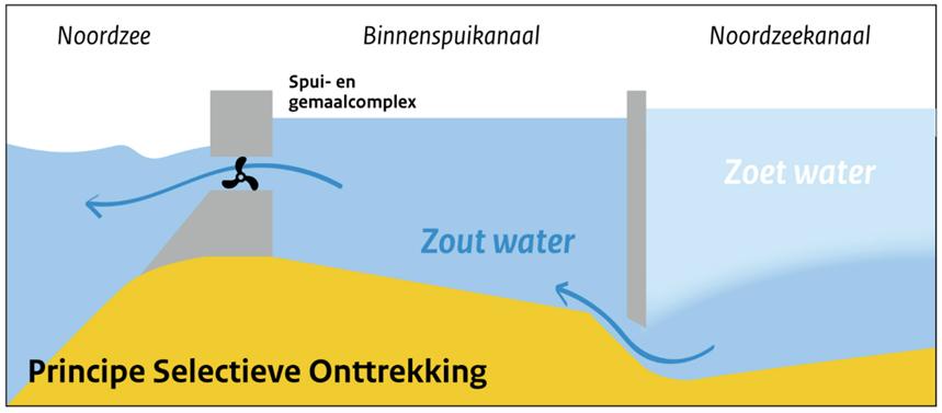 Afbeelding 7. Beschrijving van principe van selectieve onttrekking om zoutindringing in het Noordzeekanaal tegen te gaan (bron: www.rijkswaterstaat.nl/water/).